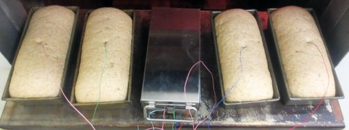 FSMA Kill Step Profiling Bread